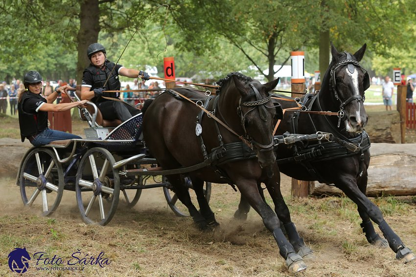 12–13/09/2020 // Czech Carriage Racing Championship