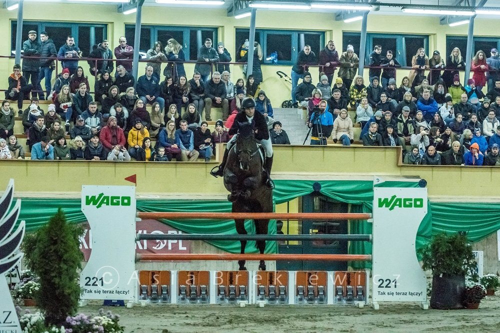 06-08/11/2020 //  INTERNATIONAL SHOWJUMPING CSI2*